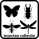 Collectie_icon_v03